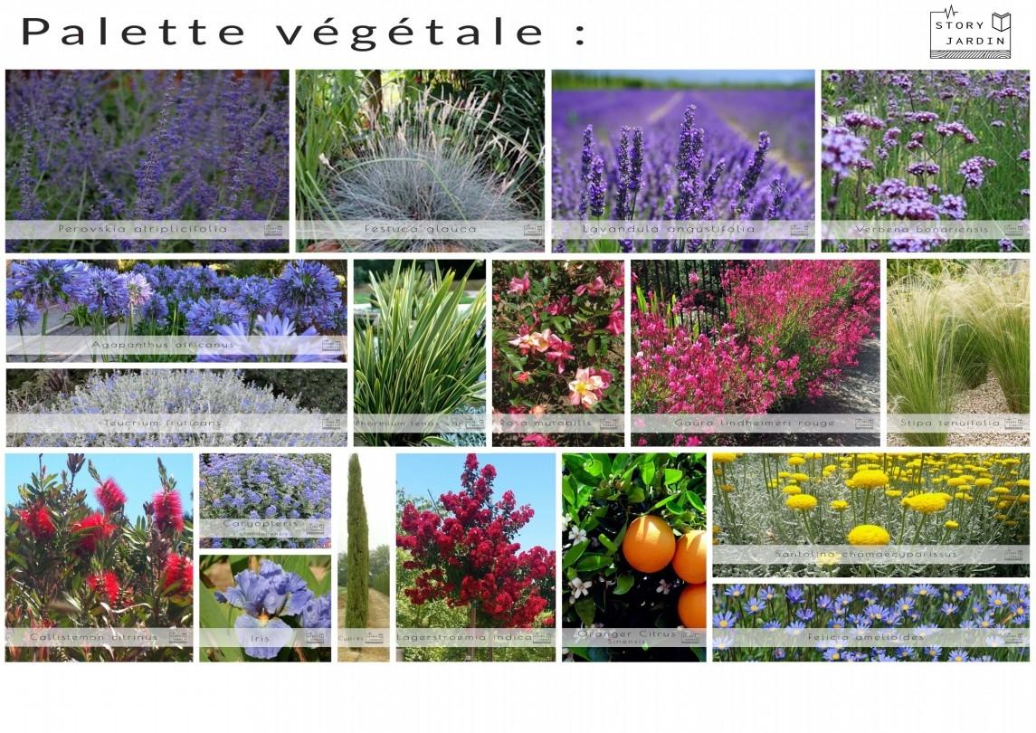 Palette vegetale